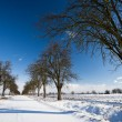 Alley covered with fresh snow on a sunn — Stock Photo #9115547