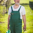 Royalty-Free Stock Photo: Portrait of a senior gardener in his garden/orchard