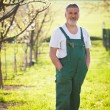 Portrait of a senior gardener in his garden/orchard — Stock Photo