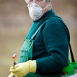 Using chemicals in the garden/orchard - Stock Photo