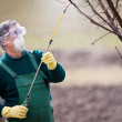 Using chemicals in the garden/orchard — Stock Photo #9790485