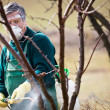 Using chemicals in the garden/orchard — Stock Photo #9790490