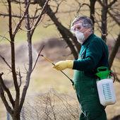 использование химических веществ в orchard сад — Стоковое фото