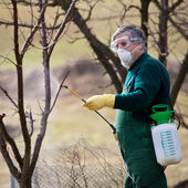Using chemicals in the garden/orchard — Stok fotoğraf