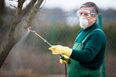 Using chemicals in the garden/orchard — Foto Stock