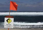 Advertencia alto surf — Foto de Stock