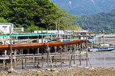 Tai O Fishing Village with Stilt-house - Hong Kong Tourism — Stock Photo