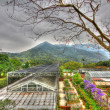 Greenhouse in countryside of Hong Kong, HDR image. — 图库照片