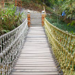 Adventure wooden rope suspension bridge in jungle rainforest — Stock Photo