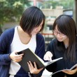 Asian students studying and discussing in university — Stock Photo #9072657
