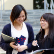 Asian students studying and discussing in university — Stock Photo