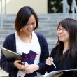 Asian students studying and discussing in university - Stock Photo