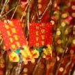Chinese red packets decorations — Stock Photo #9131841