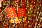 Chinese red packets decorations — Stock Photo