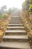 Stairs in hiking trail in Hong Kong — Stock Photo