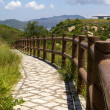 Foto Stock: Hiking trail in Cheung Chau at peak