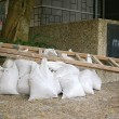 Ladder and sand bags — Stock Photo #9399984