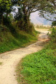 Hiking path — Stock Photo