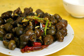 Spicy snails in Chinese style — Stock Photo