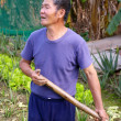 Постер, плакат: A local farmer in Hong Kong