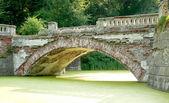 老桥 — 图库照片