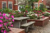 佛罗里达大学的格里芬-佛洛伊德堂庭院 — 图库照片