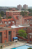University of Florida from above — Stock Photo