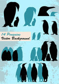 Different Penguins — Stock Vector