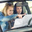 Постер, плакат: Road trip car lost women search map