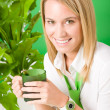Green business office woman smiling plants — Stock Photo