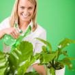 Green business woman water houseplant smiling — Stock Photo #8600396