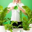 Green business superhero woman crazy plants — Stock Photo