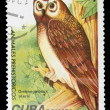 Postage Stamp — Stock Photo #8333667
