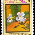 Postage Stamp — Stock Photo #8333978