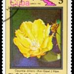 Postage Stamp — Stock Photo #8333980