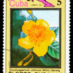 Postage Stamp — Stock Photo #8333983