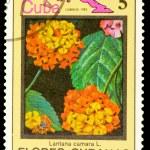Postage Stamp — Stock Photo #8333993