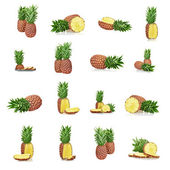 Set of a ripe pineapple isolated — Stock Photo