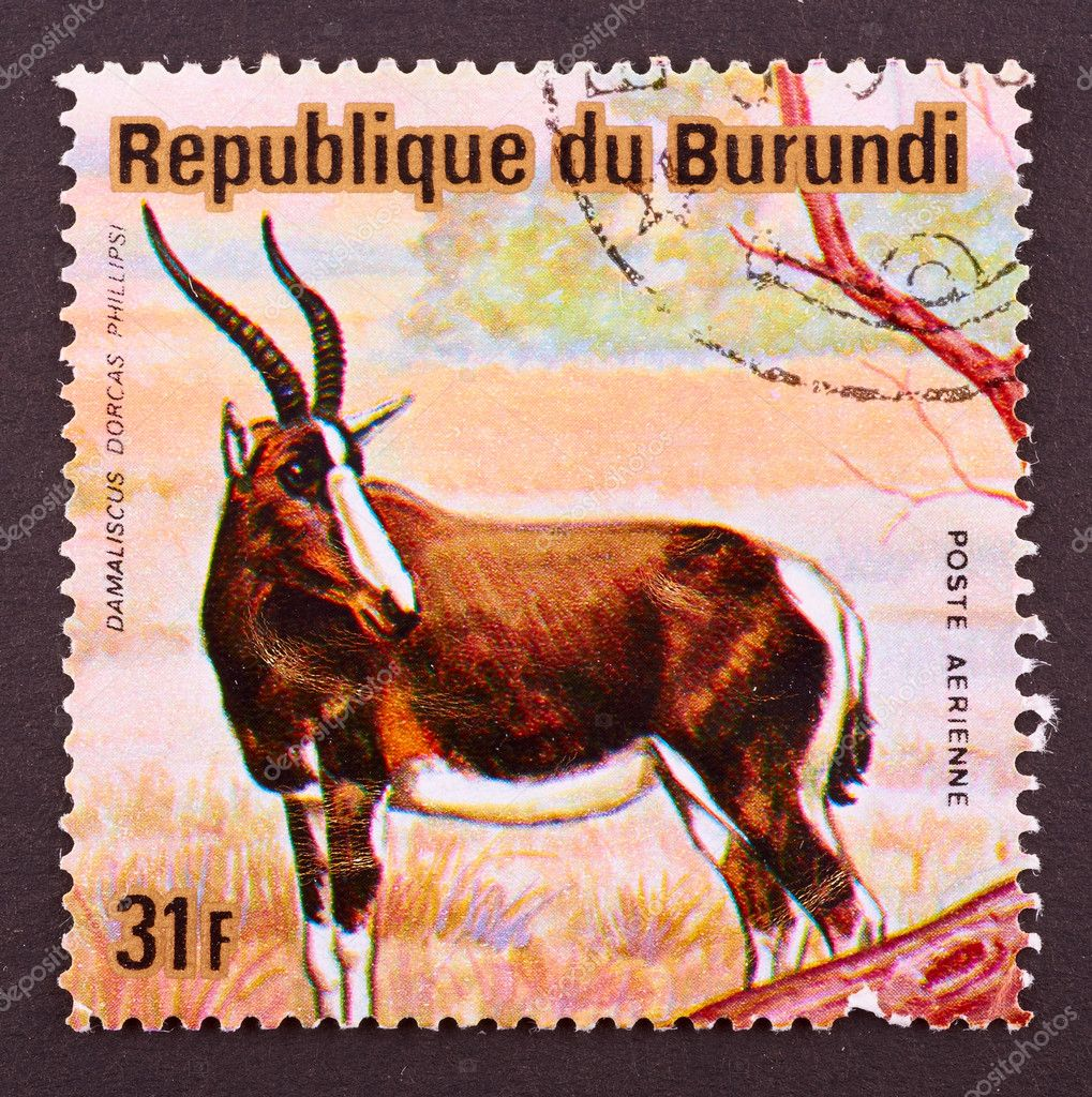 BURUNDI - CIRCA 1964: A Stamp printed in BURUNDI shows image of a animal of Burundi, circa 1964 — Stock Photo #9018062