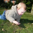 Child garden lawn crawling — Stock Photo