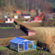 Stock Photo: Allotment greenhouse