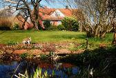 Home garden farm Denmark — Stock Photo