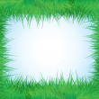 The frame of the grass — Imagen vectorial