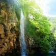 Waterfall in deep forest — Foto de stock #10281958
