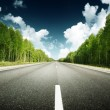 Road in forest — Stock Photo #10282111