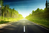 Carretera en bosque ruso — Foto de Stock