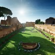 Ruins of Stadium Domitanus at the Palatine Hill in Rome, Italy — Stock Photo #10482620