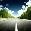 Road in forest — Stock Photo #10482655