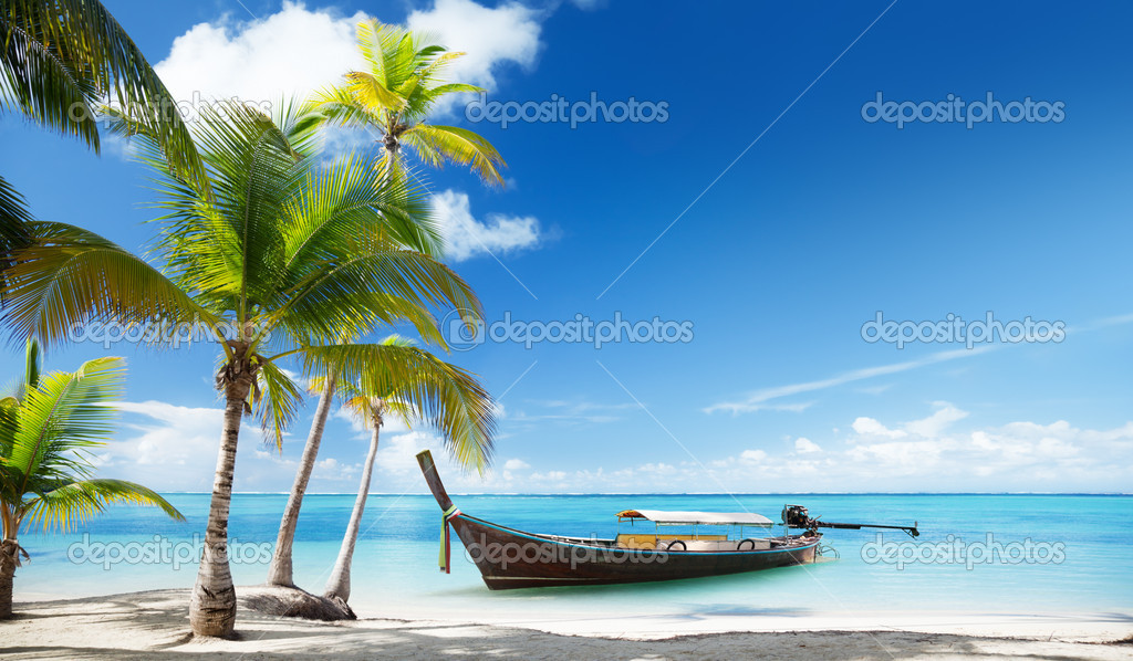 Wood boat on the beach  Stock Photo #10482596