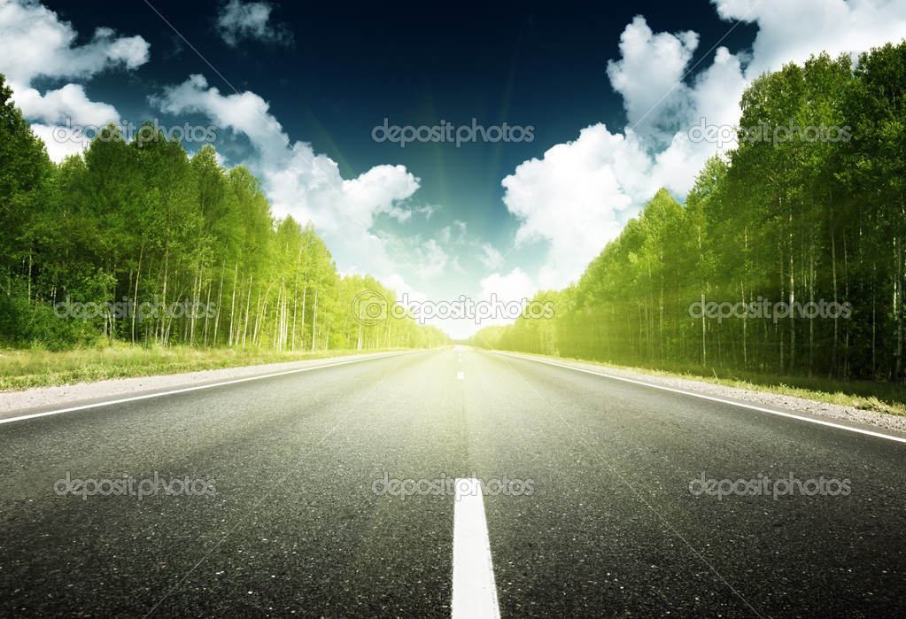 Road in forest — Stock Photo #10482659